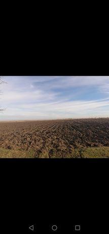 Vând ferma cu teren 7,9 ha
