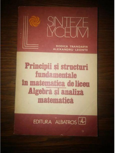 Principii si structuri fundamentale in matematica de liceu - algebra..