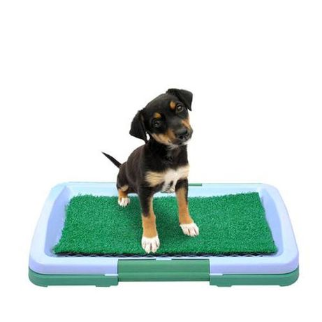 Toaleta pentru caini,catei , pisici,alte animale de companie Potty Pad