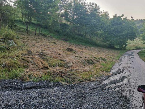 Vând teren pentru cabana în zona de munte