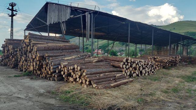 Producem stâlpi din bile de brad sau molid