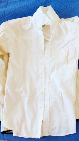 Camasa barbateasca Mavi 100% bumbac XS cu maneca lunga