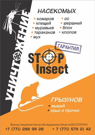 Дезинсекция Дезинфекция Дератизация клопы тараканы мыши блохи комары