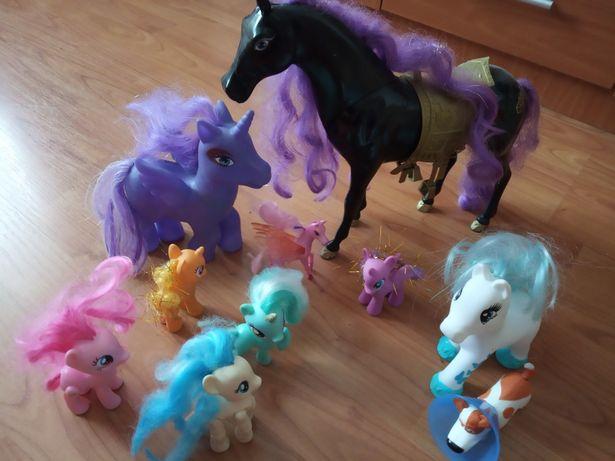 8 ponei și un cal