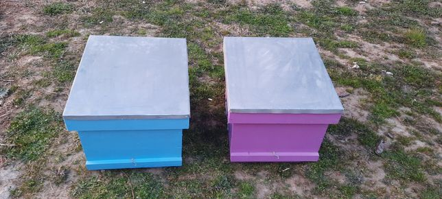 Vand Lăzi albine