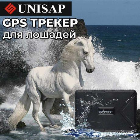 GPS Трекер для Лошадей/Батарейка до 100дней/Доставка ШЫМКЕНТ!