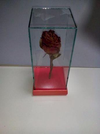 Роза за свети валентин или 8 март