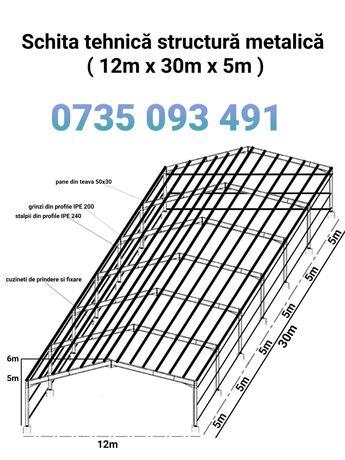 Vand hala metalica structura 12x30x5