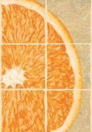 Продам новый Кафель декор с апельсинам для фартука размер 30 cм на 20