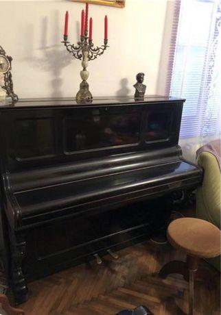 Pianina Berlineza