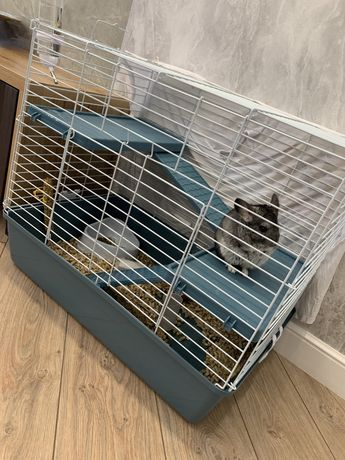 Клетка для шиншилл, дегу, грызунов (3 этажа)