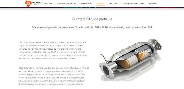 Filtru de particule / DPF - Curatare Bucuresti si Ilfov