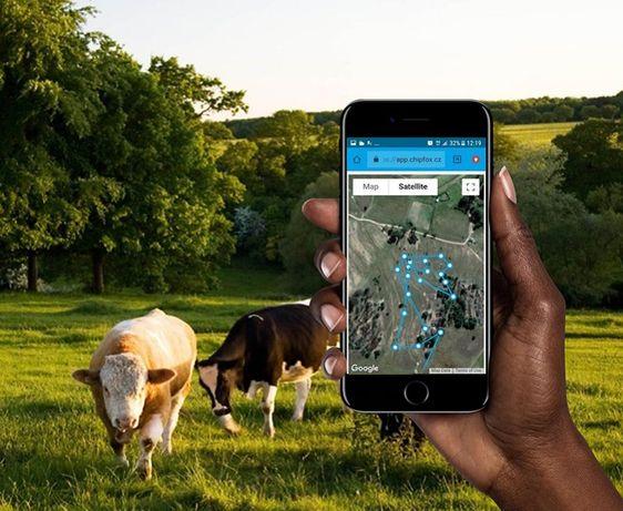 Безплатно GPS проследяване за животни - 4 модела тракери / tracker