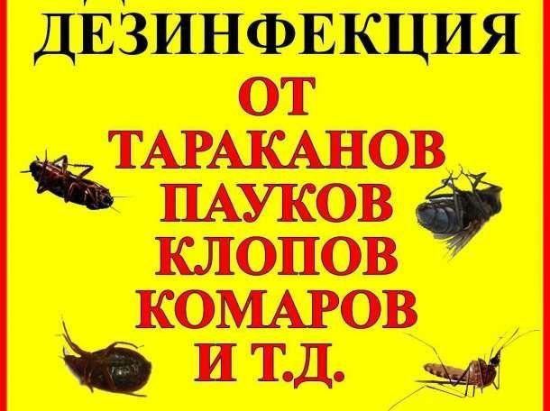 СЭС, Уничтожение Клопов, Тараканов, Блох, Мыши, Гарантия!Дезинфекция