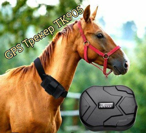 GPS треккер TK905 для лошадей коров баранов машин автомобилей