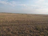 Срочно!!! Горящий вариант, сельхоз земли, в Атырауской области.