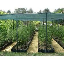 Plasa Protectie Soare/Umbrire=Ideala sere/gradini; 2x50ml; 30% umbrire