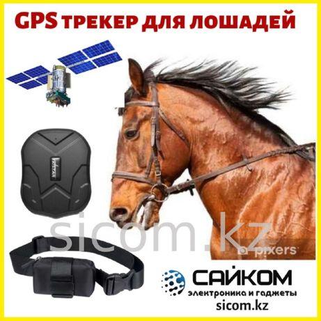 Спутниковый GPS Трекер для Лошадей/Батарейка до 60 дней/ГАРАНТИЯ