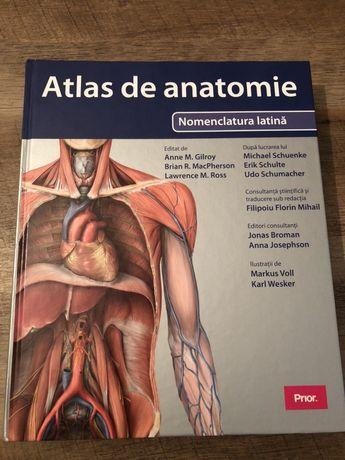 Vand atlas anatomie