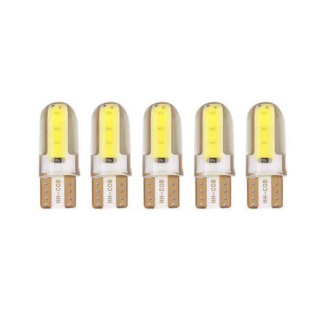 Два вида диодни LED  крушки T10/5W - Силикагел и CANBUS 24smd LED