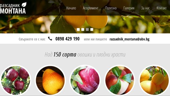 РАЗСАДНИК МОНТАНА овошки дръвчета - сливи орех лешник бадем и др.
