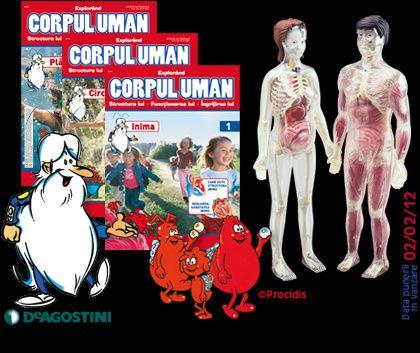 """Nr 1 si 2 din Colecția """"Corpul Uman"""" de la DeAgostini"""