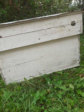 Vand lazi pentru albine