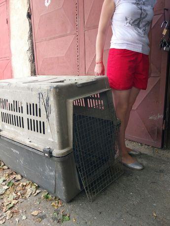 Vând cușcă transport câini