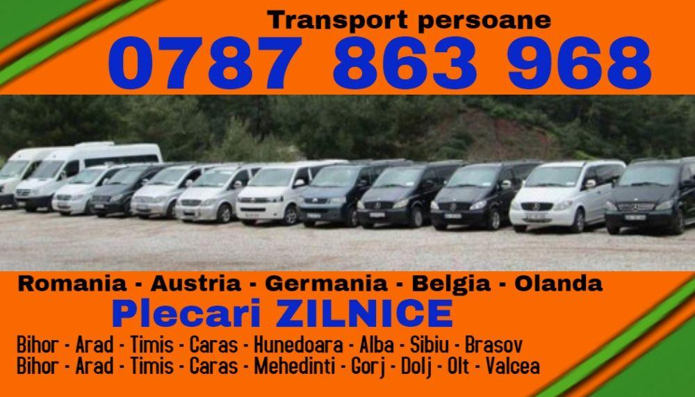 ZILNIC transport persoane gj m Romania Austria Germania plecari adresa Motru - imagine 1