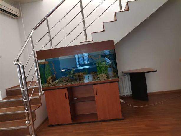 Продам аквариум с тумбой за 80000 тг