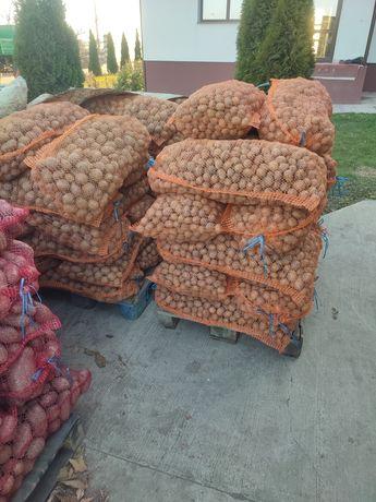 Cartofi pentru animale la 0,7 lei