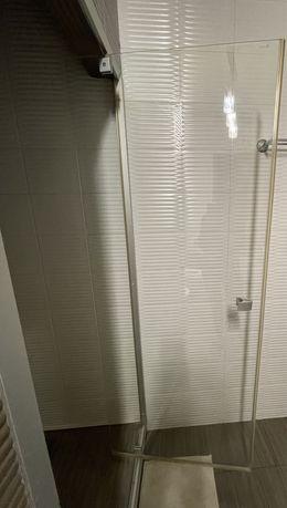 Дверь душевая