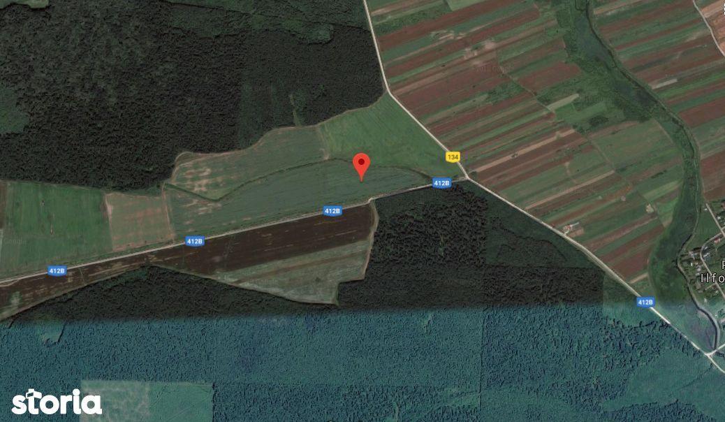 Teren Agricol 44500 mp Padureni Jud. Giurgiu