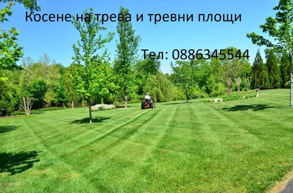 Поддръжка и Обслужване на озеленени площи