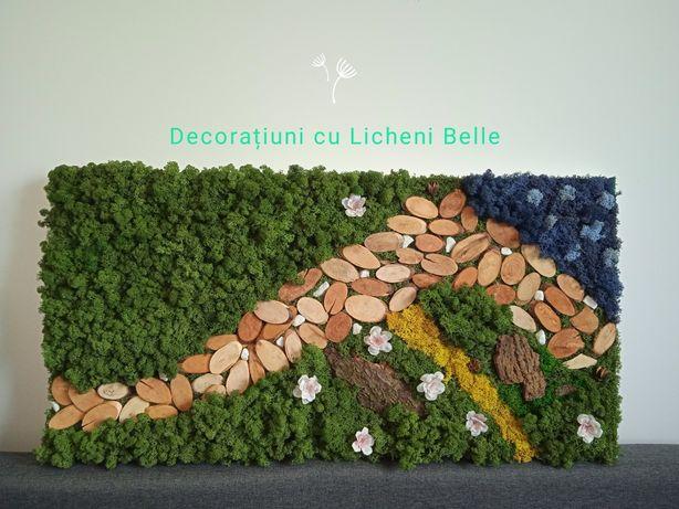 Vand tablouri cu licheni stabilizati