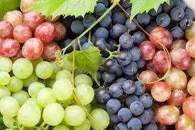 Vand struguri de vin diferite soiuri sau schimb cu cartofi