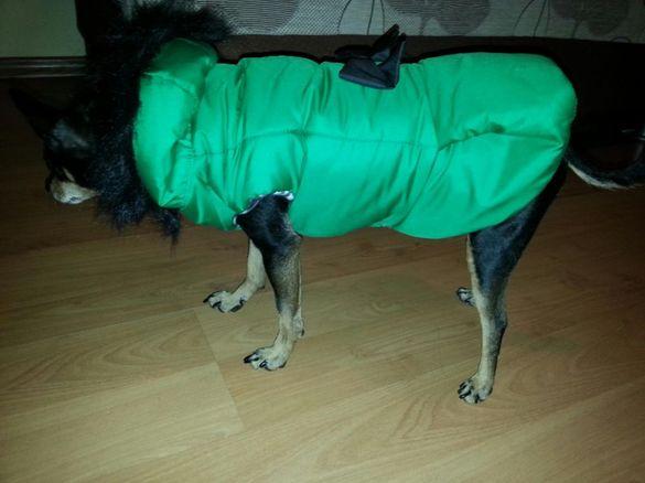 Якета за куче в 3 размера