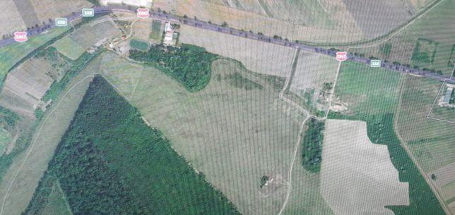 Vând pășune Zona Lunca Mureșului