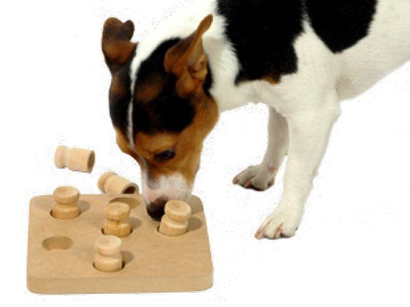 НОВИ! Кучешка дъска играчка за интелект от дърво