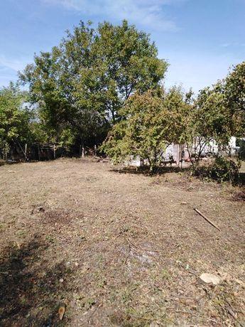 Косене на дворове, рязане на дървета за регион Варна