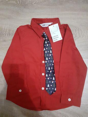Camasa + cravata baieti