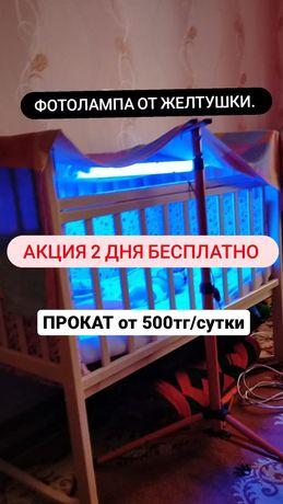 Прокат фотолампа ОТ ЖЕЛТУШКИ