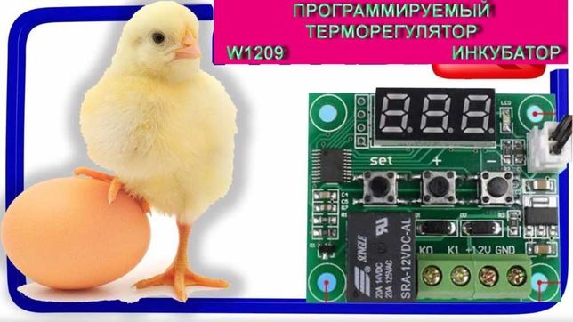 Терморегулятор W 1209  птенцы яйца куры перепел инкубатор брудер