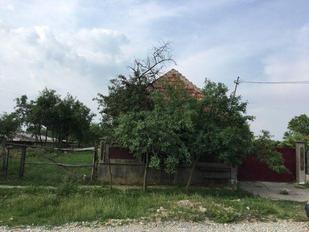 Vand casa la țară,zona borșea