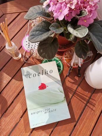 Carte Unsprezece minute - Paulo Coelho