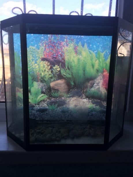 Продам аквариум на 10 литров