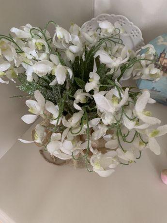 Цветы подарок подснежники вечные