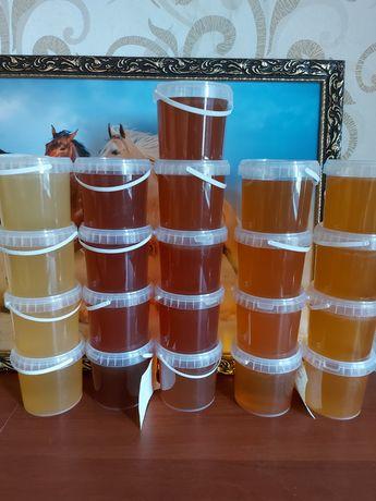Продам Алтайский мед