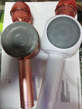 Микрофон-караоке.