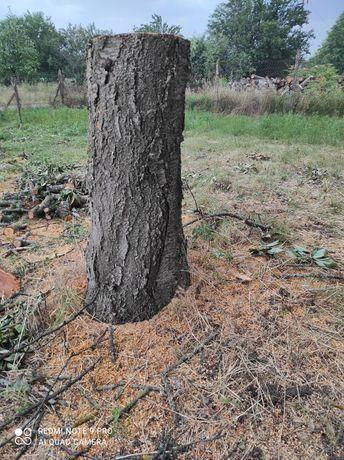 Череша дървен материал